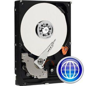 250GB WD 7200RPM 8MB IDE CAVIER BLUE