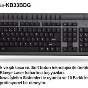 ARTES KB33BDG MM Q USB GÜMÜŞ/SİYAH KLAVYE